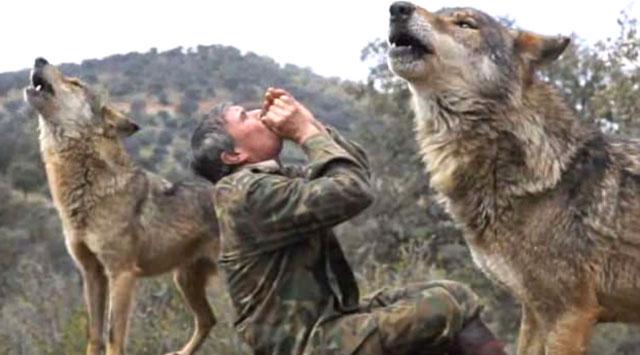 Marcos Rodríguez Pantoja live with wolf