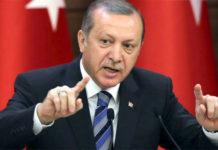 Tayyab Erdogan Government