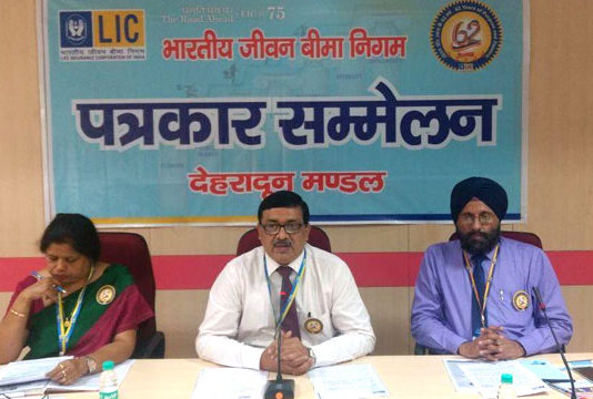 LIC played an important role in the country's economic development