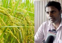 grow organic crops